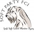 Soft Party FCI